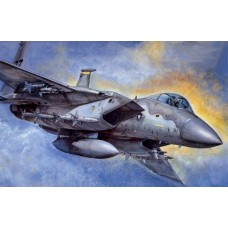 F-15 C/D EAGLE 1/48