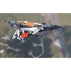 Tornado Black Panther